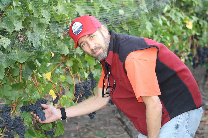 Winemaker Boyd Teegarden in the vineyard